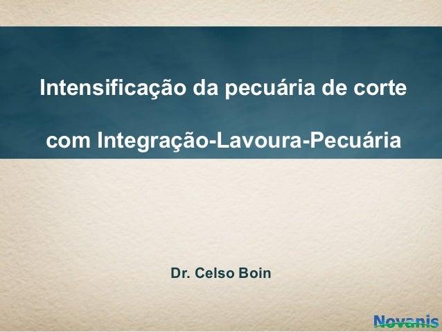 Intensificação da pecuária de cortecom Integração-Lavoura-Pecuária            Dr. Celso Boin