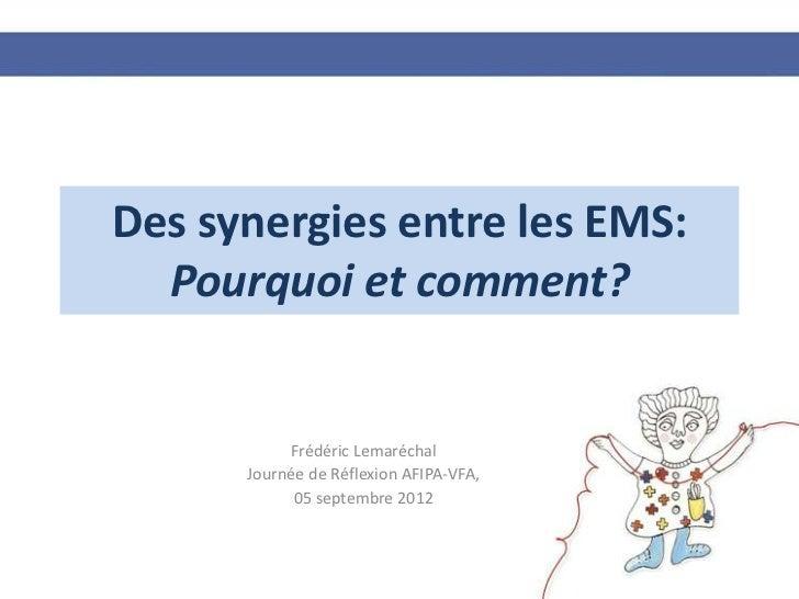 Des synergies entre les EMS:  Pourquoi et comment?           Frédéric Lemaréchal      Journée de Réflexion AFIPA-VFA,     ...