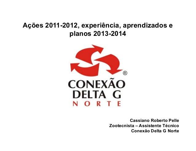 Ações 2011-2012, experiência, aprendizados e             planos 2013-2014                                  Cassiano Robert...