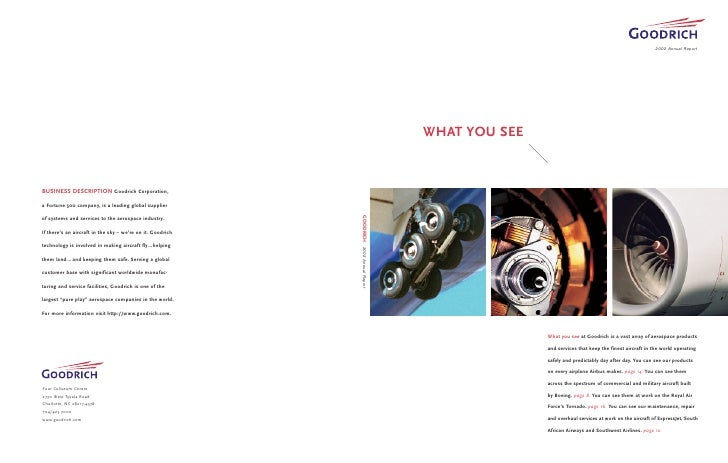2002 Annual Report     WHAT YOU SEE                    What you see at Goodrich is a vast array of aerospace products     ...
