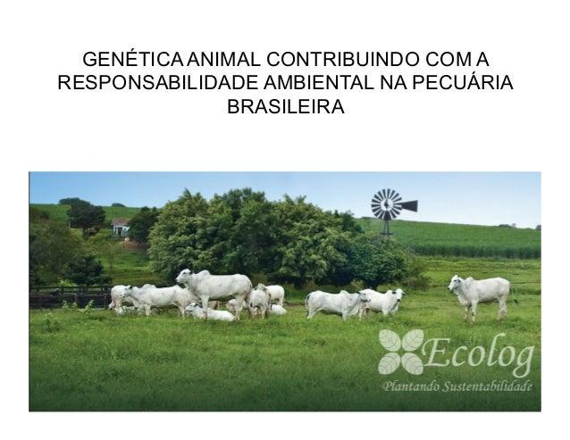 GENÉTICA ANIMAL CONTRIBUINDO COM ARESPONSABILIDADE AMBIENTAL NA PECUÁRIA              BRASILEIRA