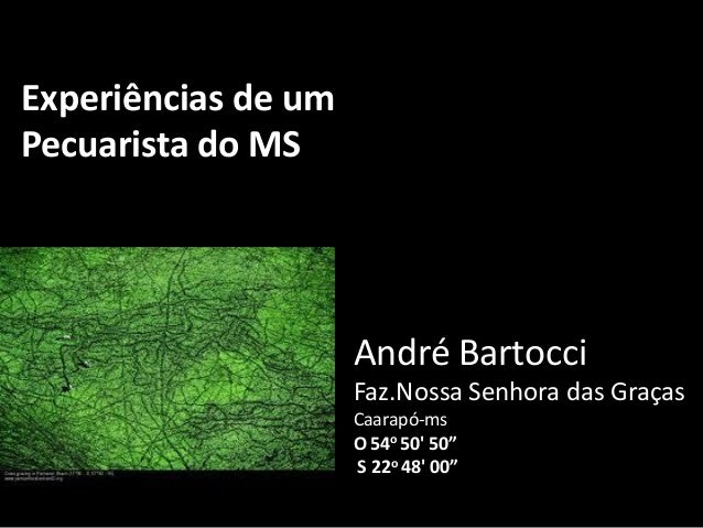Experiências de umPecuarista do MS                     André Bartocci                     Faz.Nossa Senhora das Graças    ...