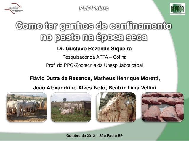 P&D PhibroComo ter ganhos de confinamento    no pasto na época seca             Dr. Gustavo Rezende Siqueira              ...