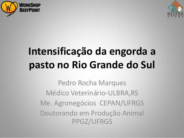 Intensificação da engorda apasto no Rio Grande do Sul       Pedro Rocha Marques   Médico Veterinário-ULBRA,RS  Me. Agroneg...
