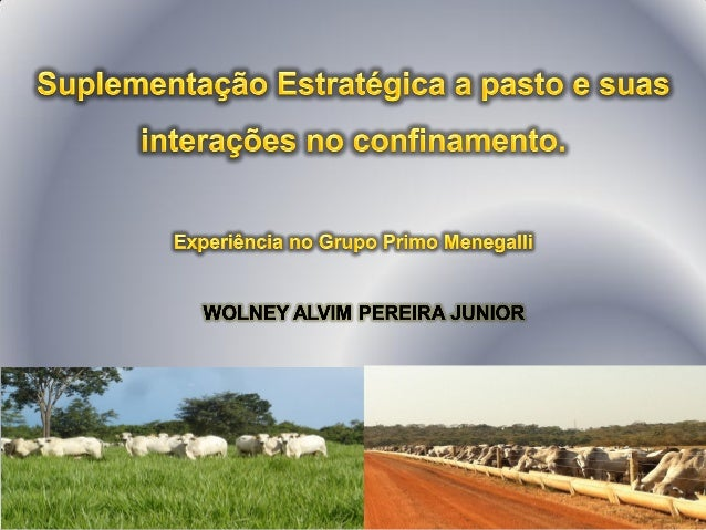 São Paulo – SP     2012