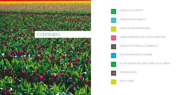 Flores y plantas ornamentales for 2 plantas ornamentales
