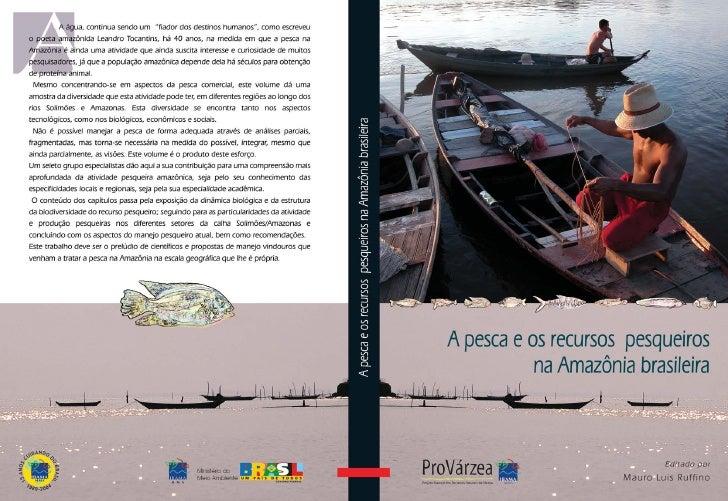 A pesca e os recursos   pesqueiros na Amazônia brasileira