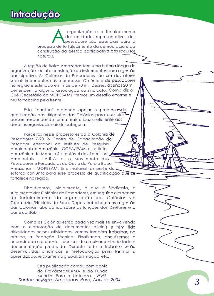 Introdução                    A                           organização e o fortalecimento                          das enti...