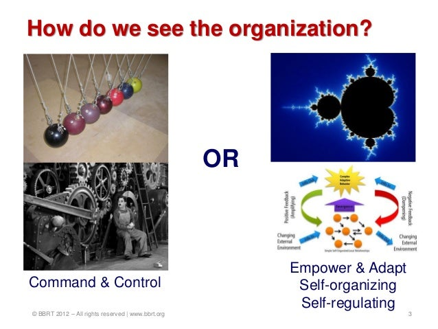 How do we see the organization?                                                   OR                                      ...