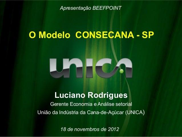 Apresentação BEEFPOINTO Modelo CONSECANA - SP       Luciano Rodrigues      Gerente Economia e Análise setorial União da In...