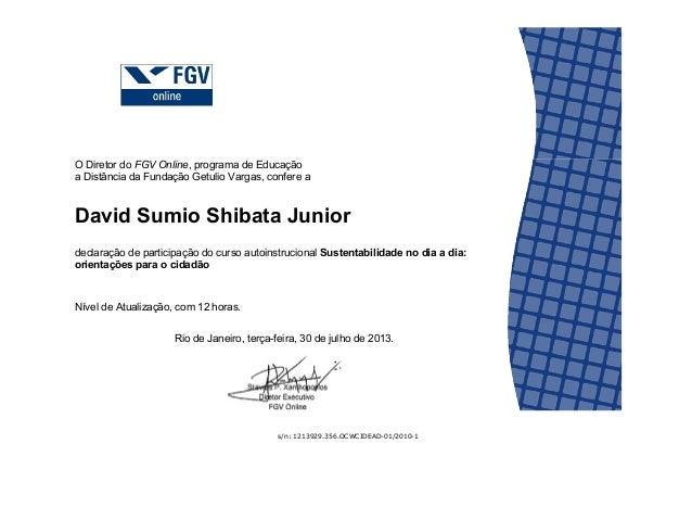 Certificado Curso Fgv