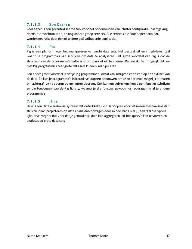 Essay voorbeelden