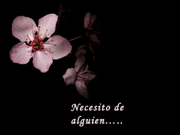 Necesito de alguien…..