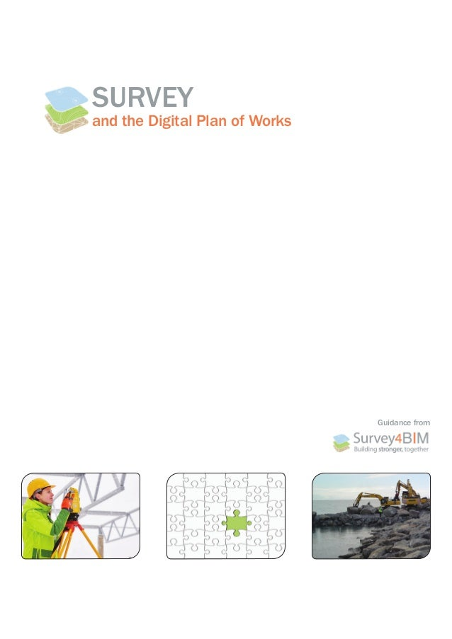 SURVEY and the Digital Plan of Works Guidance from