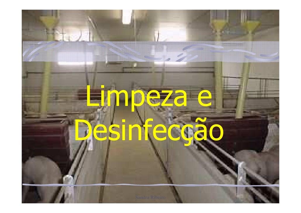Limpeza eDesinfecção    Sandra Ribeiro   1