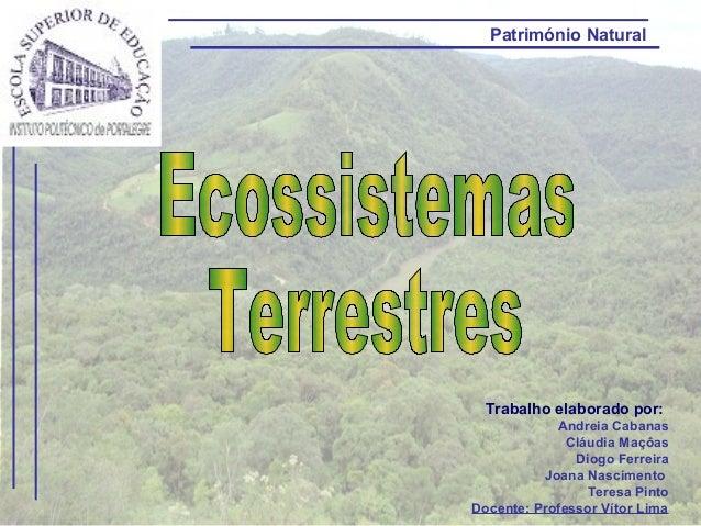 Trabalho elaborado por: Andreia Cabanas Cláudia Maçôas Diogo Ferreira Joana Nascimento Teresa Pinto Docente: Professor Vít...