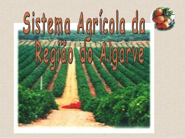 • Sul de Portugal • Área ± 500.000 ha • Limitado: • De Este para Oeste:  Norte →  Sul e Oeste →  Este →  Sotavento → V...