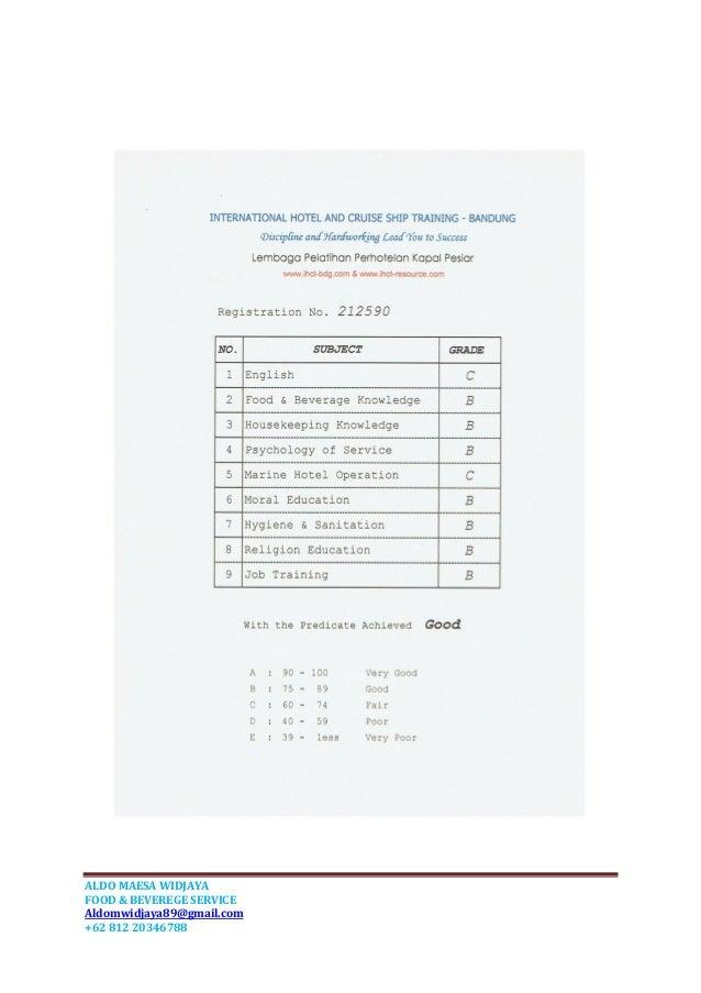 curriculum vitae aldo pdf