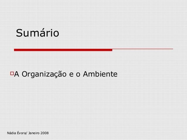 Sumário  A Organização e o Ambiente  Nádia Évora/ Janeiro 2008