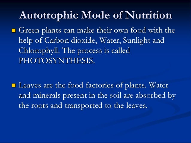 Green Plants Make Their Own Food In A Process Called