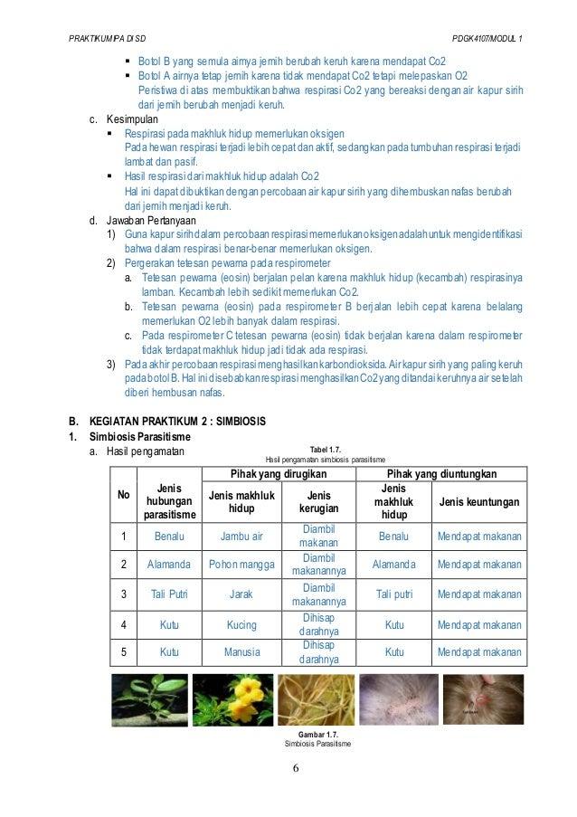 Laporan Praktikum Ipa Modul 4 Gerak Seputar Laporan