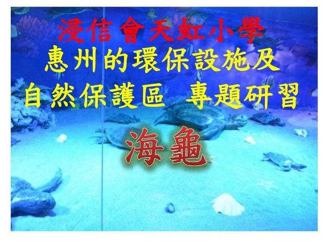 惠州的環保設施及 自然保護區 專題研習 浸信會天虹小學