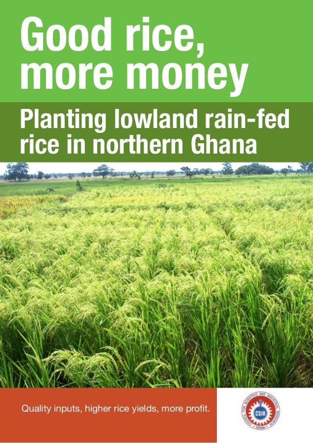 Good rice, more money Quality inputs, higher rice yields, more profit. Planting lowland rain-fed rice in northern Ghana