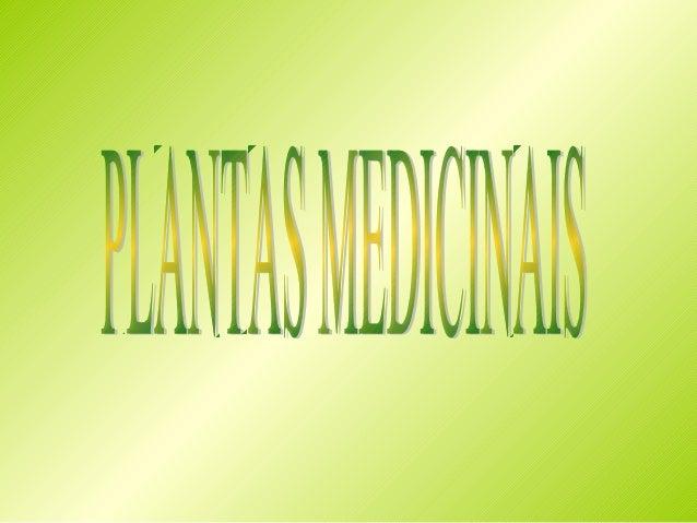  Amor – de – hortelão (Galium aparine)trepadora. Caules flexíveis quadrangulares que se prendem na Planta anual vegetação...