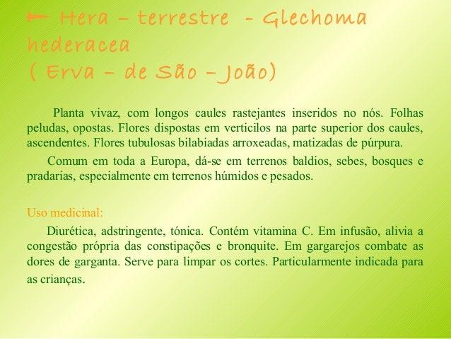  HIPERICÃO ou erva de S. João – Hipericum perforatum Planta vivaz glabra, ramificada, que gera rebentos com muitas folhas...