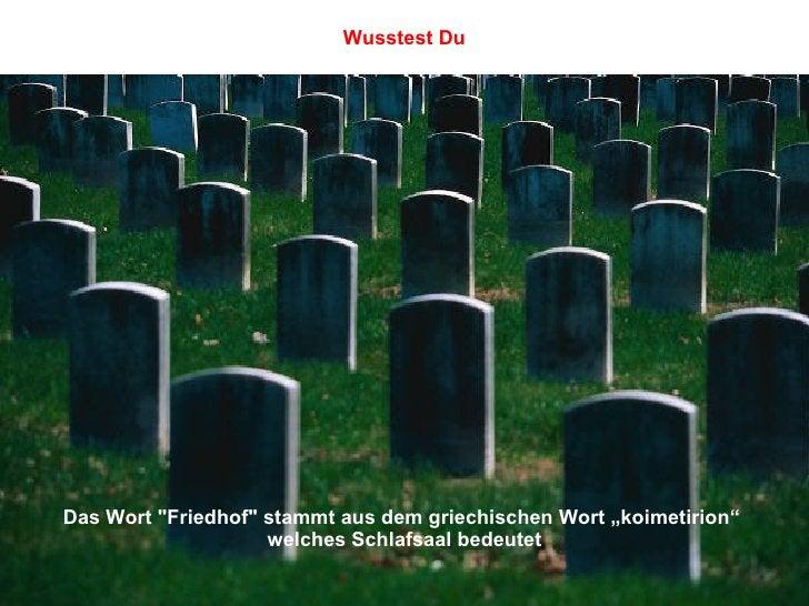 """Das Wort """"Friedhof"""" stammt aus dem griechischen Wort """"koimetirion""""  welches Schlafsaal bedeutet Wusstest Du"""