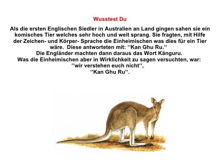Als die ersten Englischen Siedler in Australien an Land gingen sahen sie ein komisches Tier welches sehr hoch und weit spr...