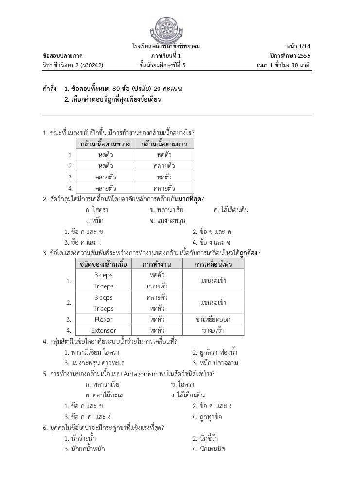 โรงเรียนพลับพลาชัยพิทยาคม                                    หน้า 1/14ข้อสอบปลายภาค                               ภาคเรียน...