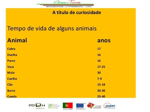 A título de curiosidade  Tempo de vida de alguns animais Animal  anos  Cabra  17  Ovelha  16  Porco  16  Vaca  17-25  Mula...
