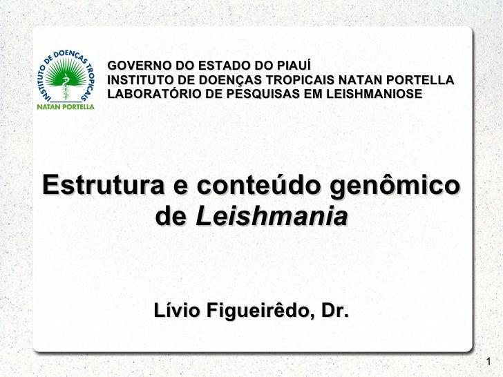 GOVERNO DO ESTADO DO PIAUÍ    INSTITUTO DE DOENÇAS TROPICAIS NATAN PORTELLA    LABORATÓRIO DE PESQUISAS EM LEISHMANIOSEEst...