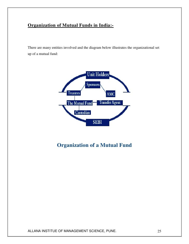 Analysis of Mutual Fund Schemes of Reliance Money By