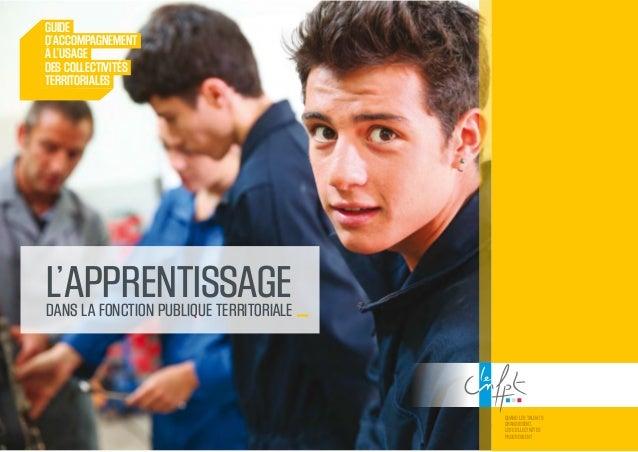 Guide De L Apprentissage Dans La Fonction Publique Territoriale