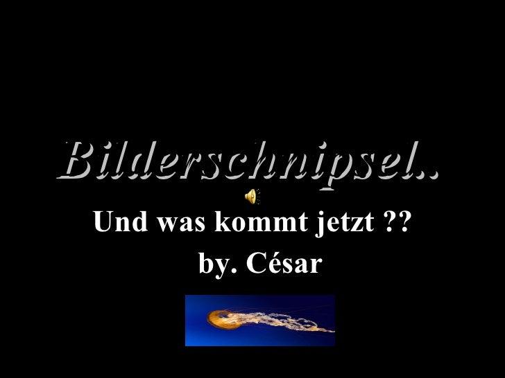 Bilderschnipsel..   Und was kommt jetzt ?? by. César