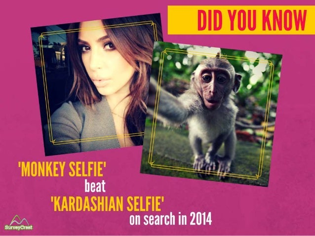 And did you know 'Monkey Selfie' beat 'Kardashian Selfie' on search in 2014?