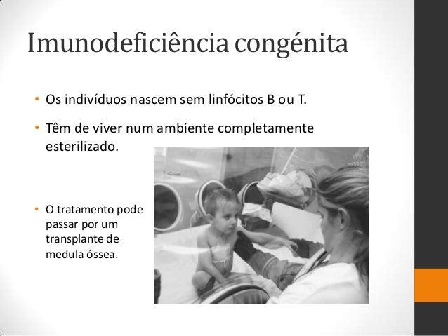 Imunodeficiência congénita• Os indivíduos nascem sem linfócitos B ou T.• Têm de viver num ambiente completamente  esterili...