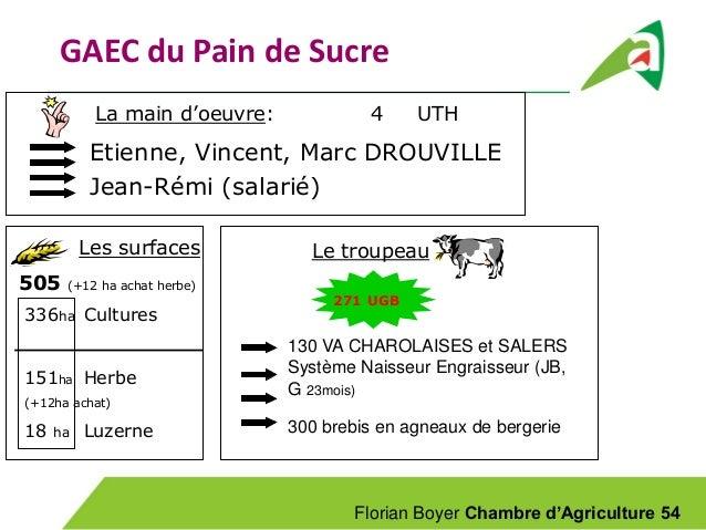 Visite 2 un syst me polyculture levage bovins viande - Chambre d agriculture 22 ...