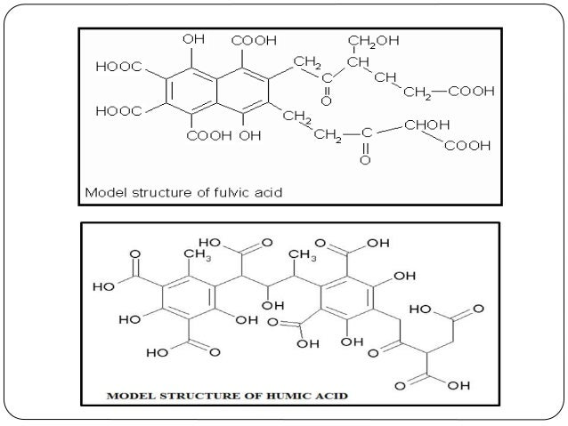 2. NON - HUMIC SUBSTANCES - The non-humic substances of shilajit are low molecular weight (Mw) compounds of plant and micr...