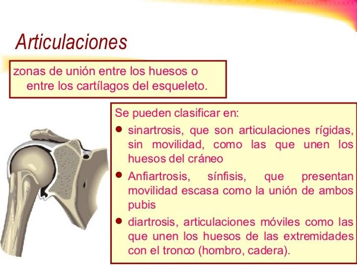 12.Dolor Articular Slide 2