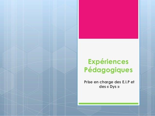 Expériences Pédagogiques Prise en charge des E.I.P et des « Dys »
