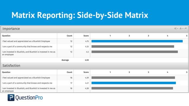 Matrix Reporting: Side-by-Side Matrix