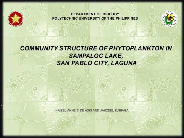 COMMUNITY STRUCTURE OF PHYTOPLANKTON IN SAMPALOC LAKE, SAN PABLO CITY, LAGUNA HAIZEL ANNE T. DE ASIS AND JAHZEEL ZUBIAGA D...