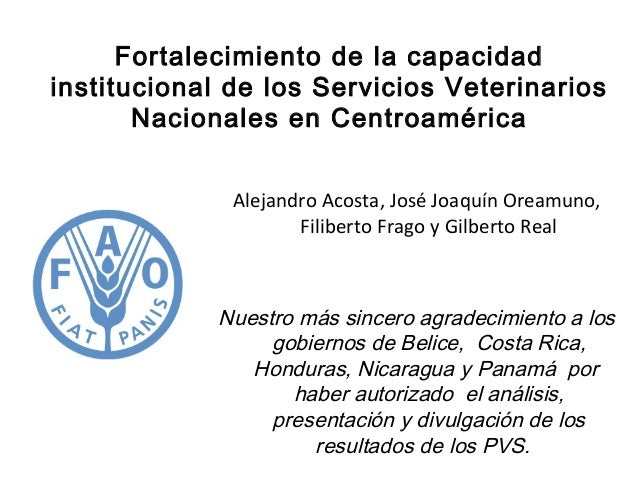 Fortalecimiento de la capacidad institucional de los Servicios Veterinarios Nacionales en Centroamérica Alejandro Acosta, ...