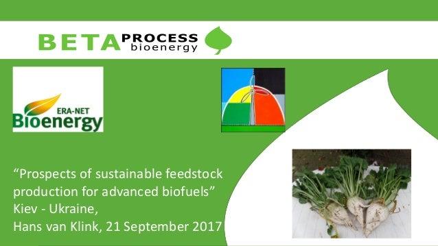 """Prospects of sustainable feedstock production for advanced biofuels"" Kiev - Ukraine, Hans van Klink, 21 September 2017"