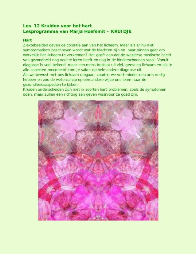 Les 12 Kruiden voor het hart Lesprogramma van Marja Hoefsmit – KRUIDJE Hart Ziektebeelden geven de conditie aan van het li...
