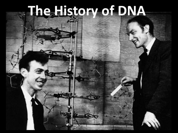 The History of DNA<br />