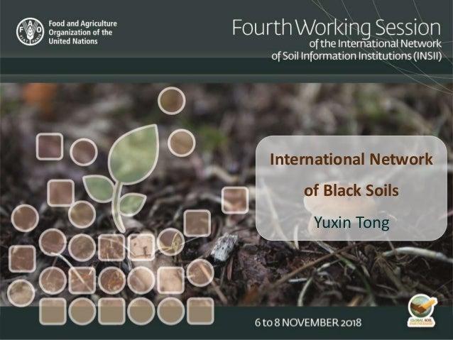 International Network of Black Soils Yuxin Tong